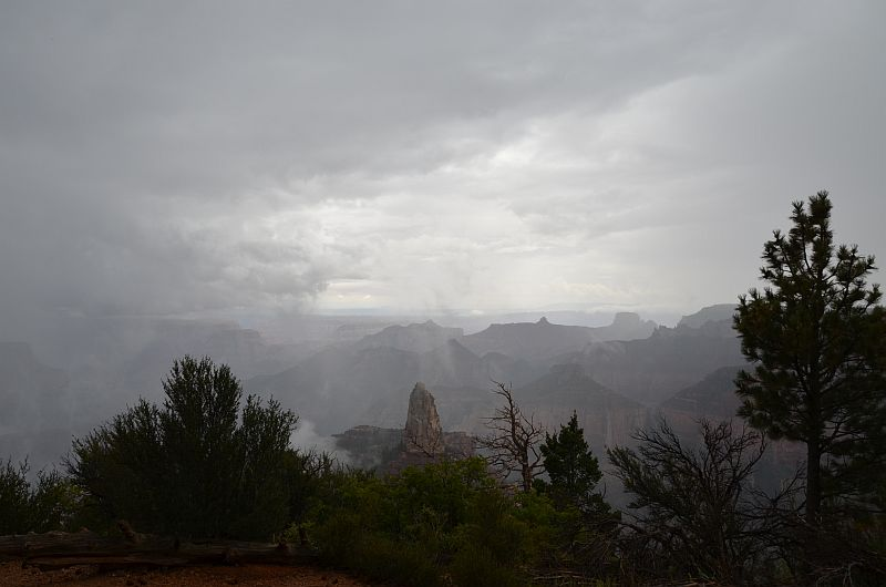 Point Imperial im Regen, Grand Canyon North Rim, AZ