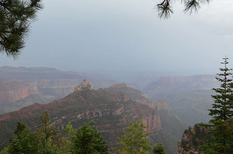 Vista Encantada bei Regen, Grand Canyon National Park, North Rim, AZ