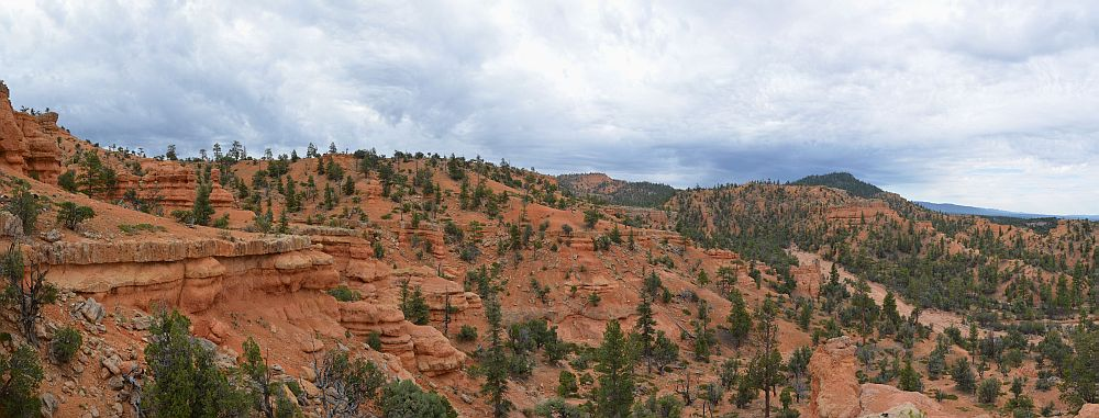 Arches Trail, Losee Canyon, Red Canyon, UT