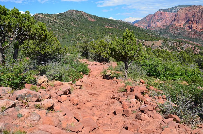 Timber Creek Overlook Trail, Kolob Canyon, Zion National Park, UT