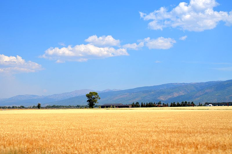 Landschaft in Idaho